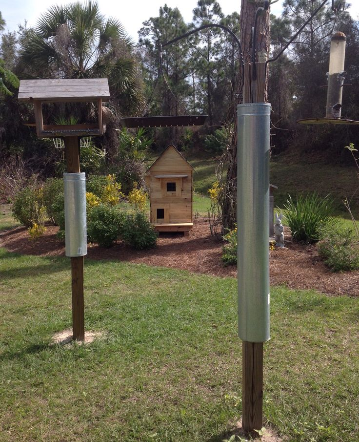"""Bird feeder baffler.  4x4 post with a 36"""" stove pipe.  Cut a 4x4 square in stove cap.  Attach to pipe. Put 2 screws in side of post and slip pipe over post.  Pipe will hang on screws and move if something tries to climb it.  A 24"""" stove pipe is sufficient.  The shorter one works just as well as the longer one. GUARANTEED to detour squirrels, snakes, raccoons and possums from raiding the feeders!  Now I just laugh, finally victory is mine!  Put post 10' from trees or bushes!"""