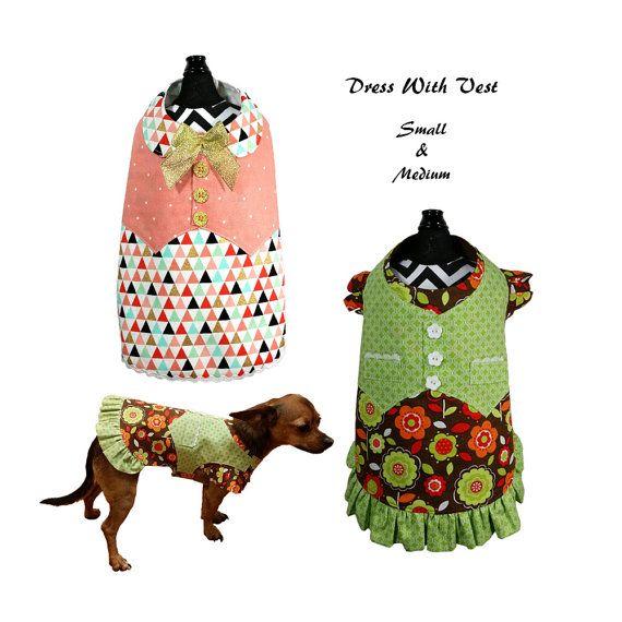 1030 besten marie Bilder auf Pinterest | Hunde, Kleine hunde und ...