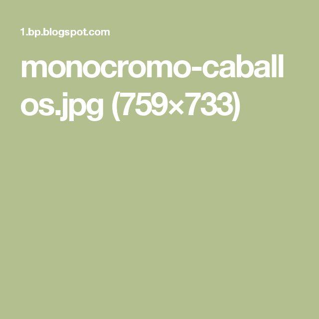 monocromo-caballos.jpg (759×733)