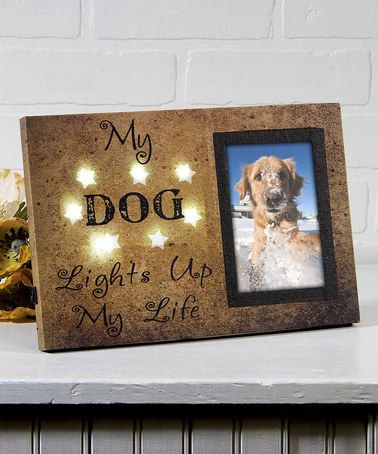 Loving this Canvas Lighted Dog Photo Frame on #zulily! #zulilyfinds