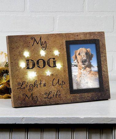 Canvas Lighted Dog Photo Frame #zulily #zulilyfinds