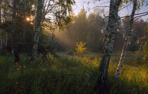 Фотограф Галанзовская Оксана (Galanzovskaya Oksana) - Лишь солнца первый луч #2007686. 35PHOTO
