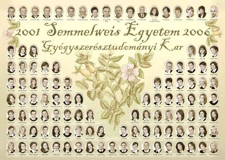 gytk2006