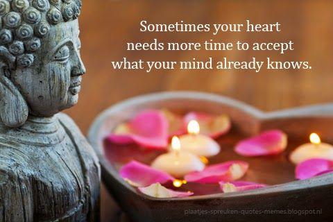plaatjes-spreuken-quotes-memes: Mooie en wijze Boeddha spreuken ...