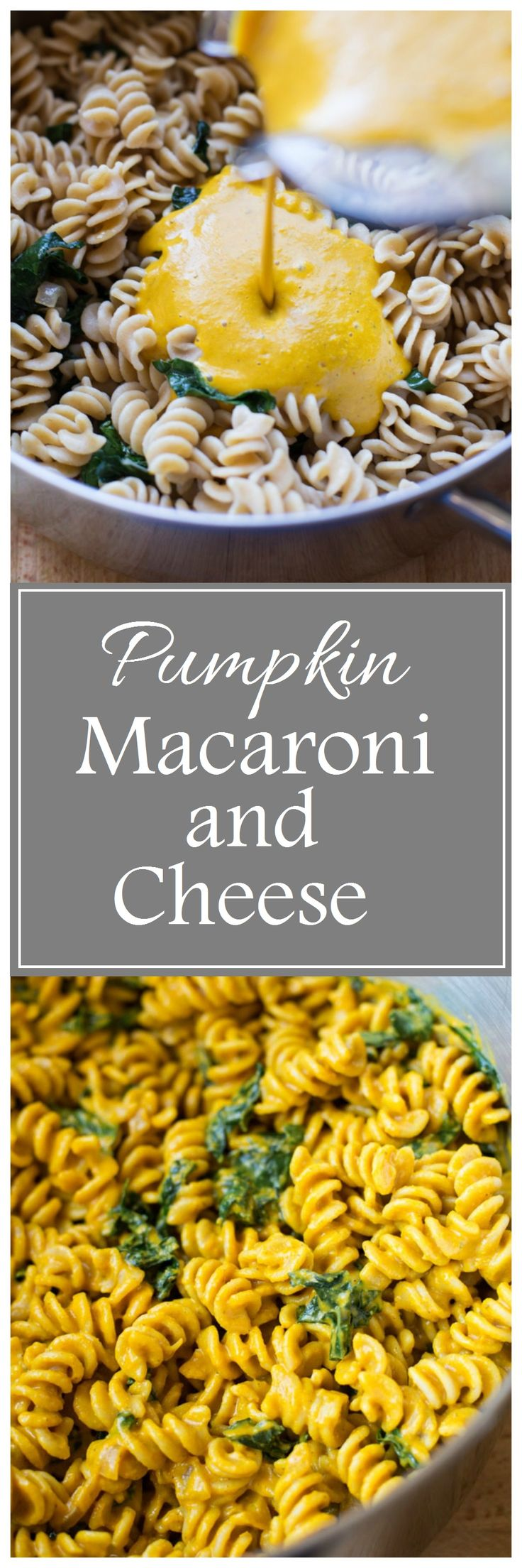 Pumpkin Macaroni and Cheese- you can't even tell this is a healthy mac n' cheese!! #dairyfree #vegan #paleo