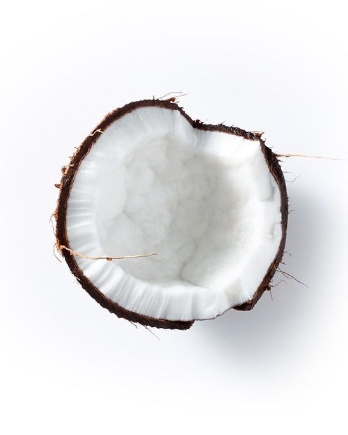 * c o c o n u t * simple things. tropical. Coconut. Love of white. White is good. White Moss