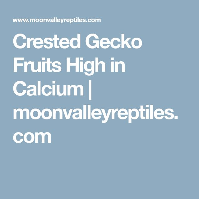 Crested Gecko Fruits High in Calcium | moonvalleyreptiles.com