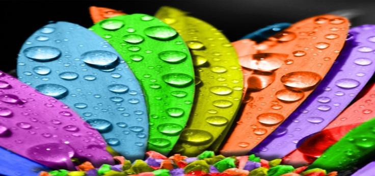 Pantone spot coloured printing