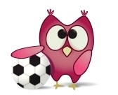 owl with soccer ball