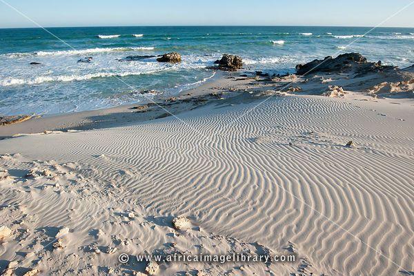 South Africa-1010-0270_large.jpg (600×400)