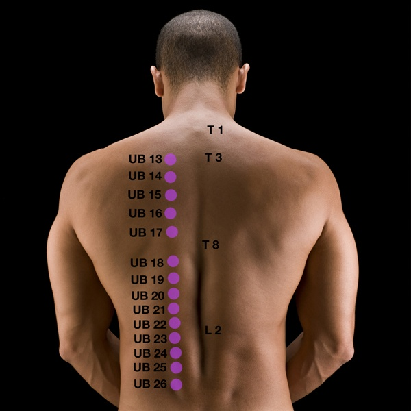 baco therapy massage