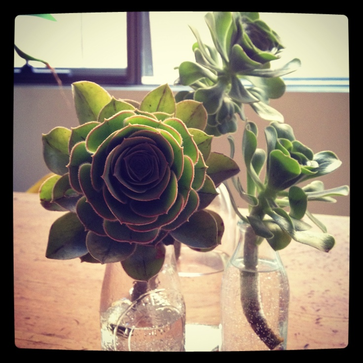 Choose an arrangement that reminds you of a lovely memory with him. #slowdown