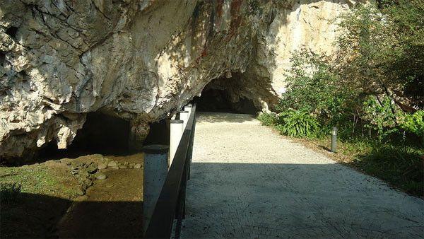 Cueva de Tito Bustillo, Asturias  En la localidad de Ribadesella, en Asturias, esta cueva contiene pinturas prehistóricas que datan desde el 22.000 hasta el 10.000 a. de C.