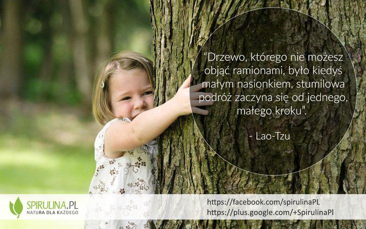 Zacznij swoją stumilową podróż! http://spirulina.pl/ #motywacja #cytaty #zdrowie #suplementy #spirulina