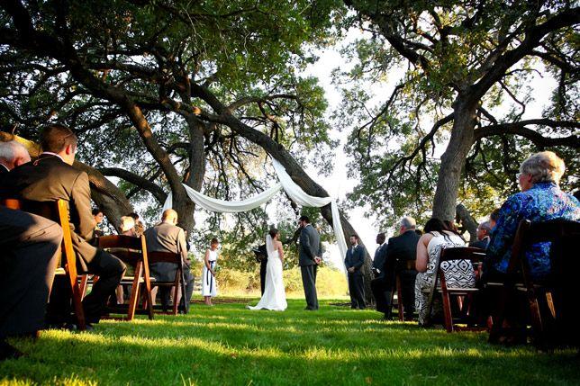 Liv by Design   Hyde Park Photography   Vineyard at Chapel Lodge Wedding   Outdoor Wedding   Farm Wedding   Texas Vineyard Wedding   Ceremony Under a Tree   #vineyardwedding