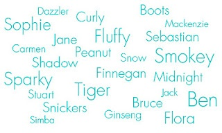 The Most Popular Cat Names of 2011