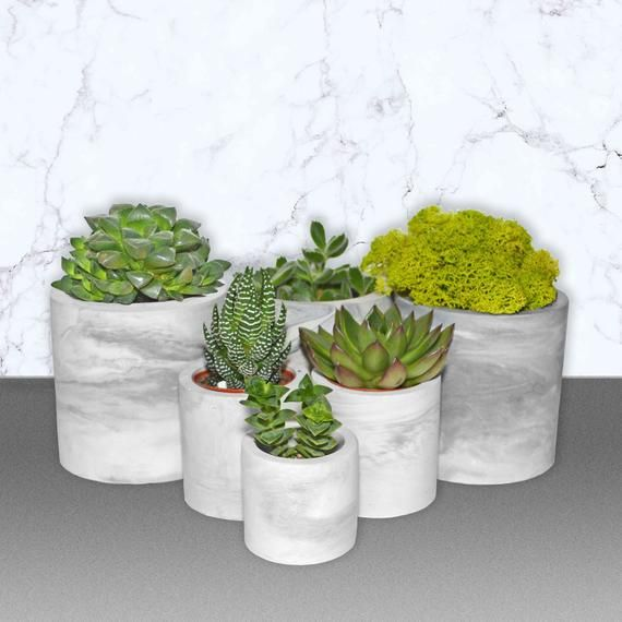 Concrete Planter Pot Marble Succulent Pot Set 4 Inch Planter Geometric Vase Pencil Holder For Desk Concrete Planters Succulent Pots Planters