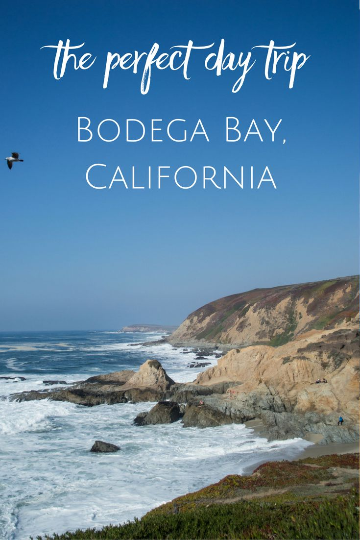 What to do in Bodega Bay for one day: hike, beaches, lunch, views