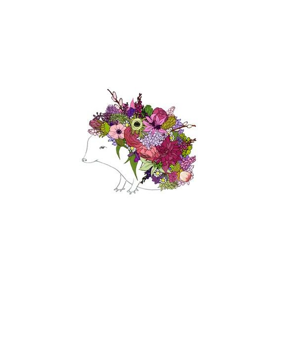 Floral Hedgehog.