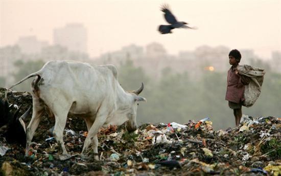 Las 10 ciudades mas contaminadas- Nueva Delhi