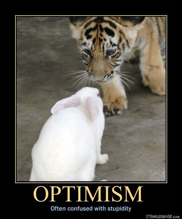 Best 25 demotivational posters ideas on pinterest - Animal pak motivational quotes ...