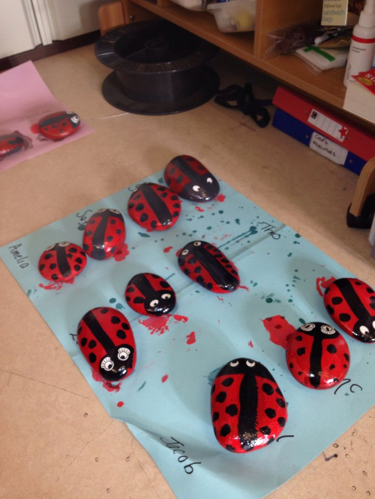 Mini beasts - hand painted stones. Kids love it.