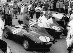 The Jaguar D-types assembled near to the start of the race