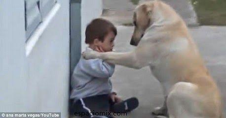 Hermosa amistad de un perro y un niño con sindrome de down  Read more: http://www.tueresmivida.net/2014/07/hermosa-amistad-de-un-perro-y-un-nino.html#ixzz37STP3OJH