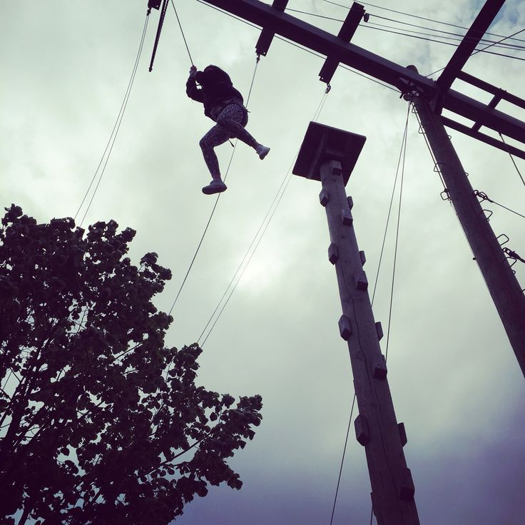 Image result for high ropes climbing