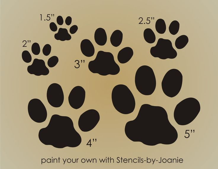 STENCIL Kitty Cat Paw Print Animal Tracks Outdoor Feline Primitive Country Signs  | eBay