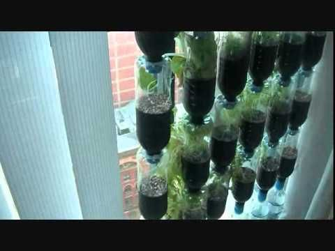 Need an idea what to do with empty bottles? - Vertical gardening