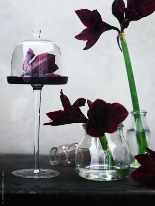 AKTAD cake stand with lid - like a full bodied wine, a deep red floral arrangement in glass makes a bold statement.