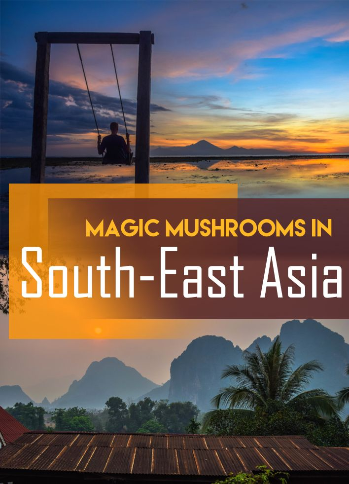 MAGIC MUSHROOMS IN SOUTH-EAST ASIA