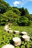 Azie wagen  Gesteentetuin : Zen stenen pad in een Japanse tuin nabij Heian Shrine.Stones zijn omgeven door lotus bladeren