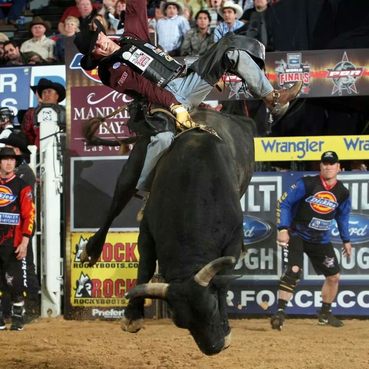 1000+ images about my favorite pbr bulls on Pinterest ... Justin Mcbride Riding