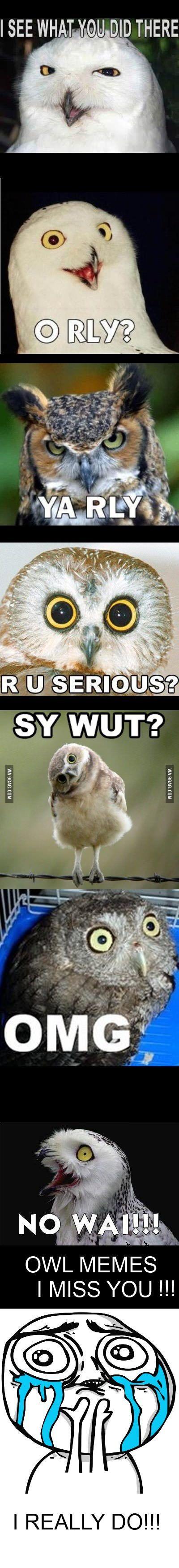 I miss the owl memes... - 9GAG