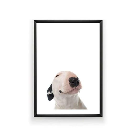 Bull Terrier Dog Print Dog Prints Pet Prints by SingleWavePrints