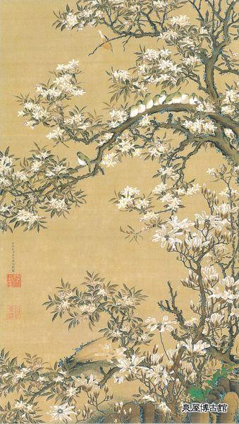 海棠目白図   伊藤若冲  江戸時代 18世紀   絹本着色   花盛りの四手辛夷(シデコブシ)と海棠。枝には身を寄せあう「目白押し」の仲間たちをよそ目に、瞑目するかの目白が一羽。伊藤若冲(1716~1800)は京都錦小路の青物問屋の主人だったが、絵に深く傾倒、40代で家業を譲り制作に専心した。鶏図をはじめとする濃彩の花鳥画や水墨画で異彩を放った。実物の観察を重んじた若冲らしく目白独特の生態に着目した本図は、鳥類を多く描いた彼の作品中でもとりわけ愛らしく、小鳥への素直な共感が感じられる。落款から代表作《動植彩絵》に着手する前後、40代前半の作と考えられる。