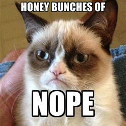 Grumpy Cat 1 - Honey bunches of nope