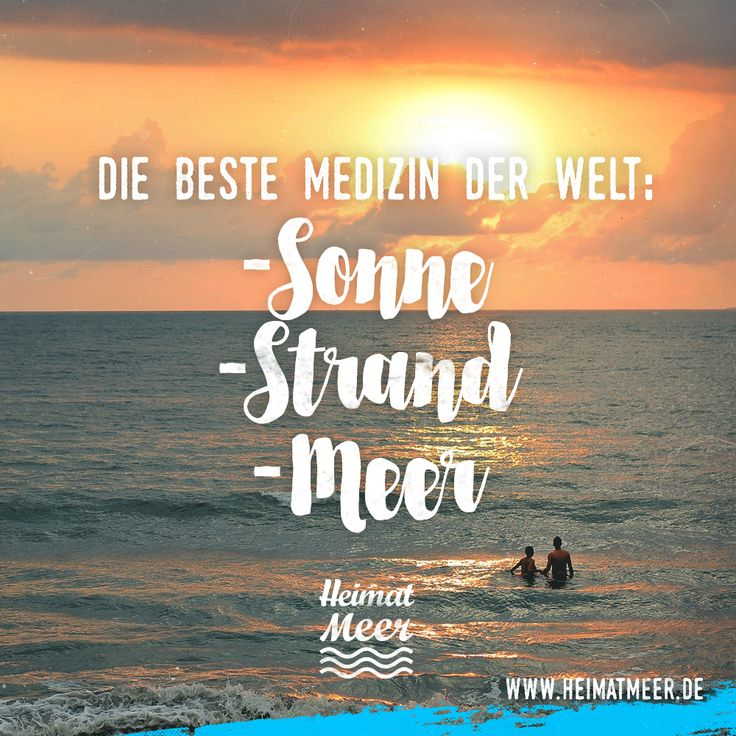Sonne, Strand & Meer. Mee(h)r gibt's auch hier >>