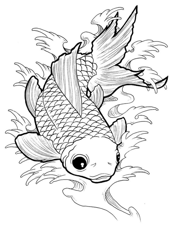 282 best images about coloring pages for adults on for Adult fish coloring pages