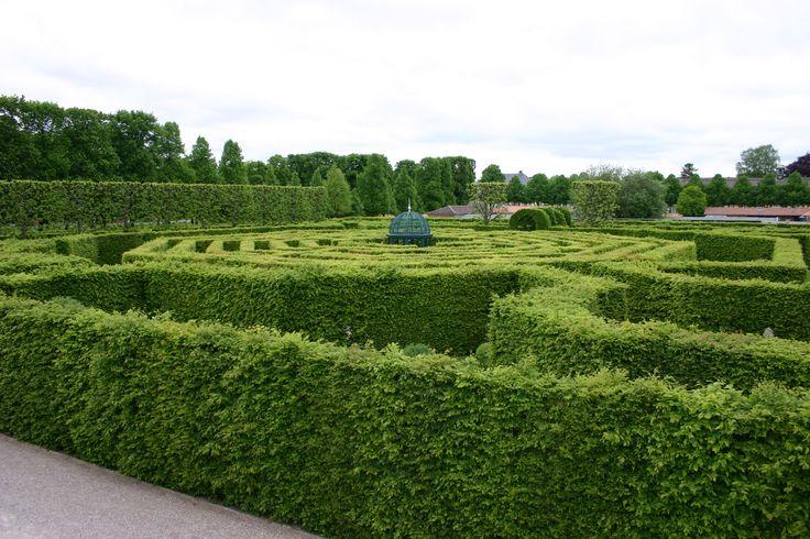 Der beste Sichtschutz für deinen Garten