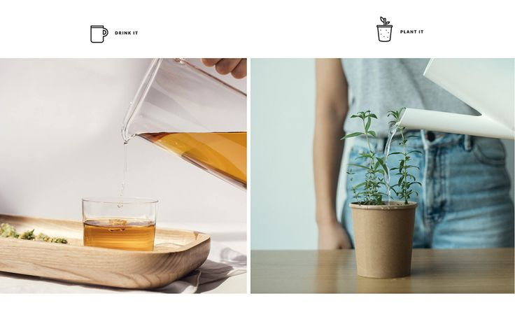 From IAMTHELAB.com: Branding & Packaging: Rhoeco Fine Organic Goods by Vasilis Gravaritis   #Featured #Tea