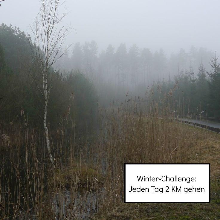 Winter Challenge 2016 - 31 Tage lang jeden Tag mindestens 2 Kilometer gehen. Gehen den Winterblues, für mehr Bewegung im Alltag, frische Lust und Zeit für dich, Zeit zum nachdenken und Neues entdecken in deiner Nachbarschaft