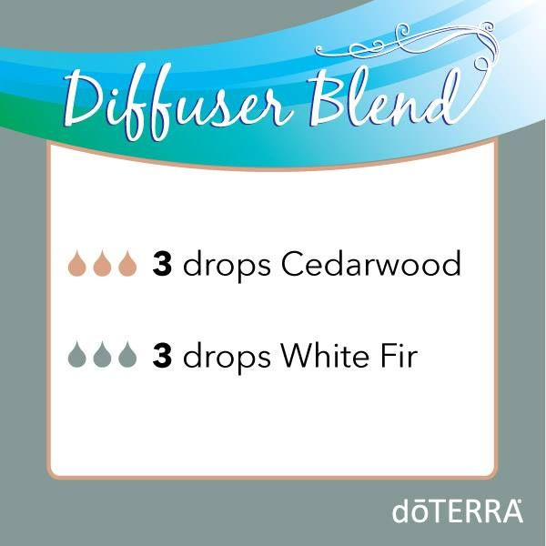 "Diffuser Blend – Cedarwood & White Fir This diffuser blend is great for people who enjoy more ""masculine"" aromas. Cedarwood- Supports and maintains healthy respiratory function White Fir- Energizes the body and mind"
