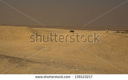 Man with mobile phone in the middle of Saqqara desert, Egypt