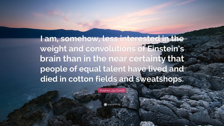 """Stephen Jay Gould Quote: """"I am, somehow, less interested in the weight and convolutions of Einstein's brain than in the near certainty that people of equal talent have lived and died in cotton fields and sweatshops."""""""