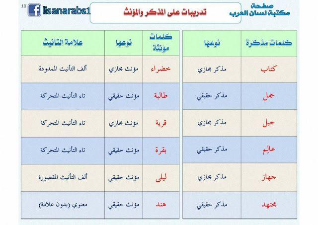 أقسام الاسم من حيث التذكير والتأنيث شرح مبسط مع الأمثلة وتحميل Pdf Learning Arabic Learning School