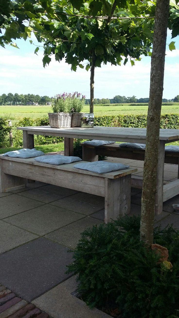 Heerlijk in de tuin onder de #platanen #zomer #kuiflavendel #landelijk #picknick