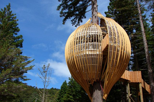 Redwoods Treehouse in New Zealand